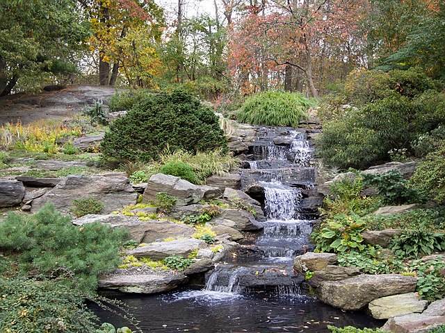 waterfall at the New York Botanical Garden